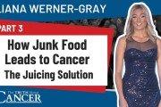 liana werner-gray presentation part 3