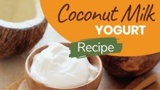 Probiotic-Rich Homemade Coconut Yogurt Recipe