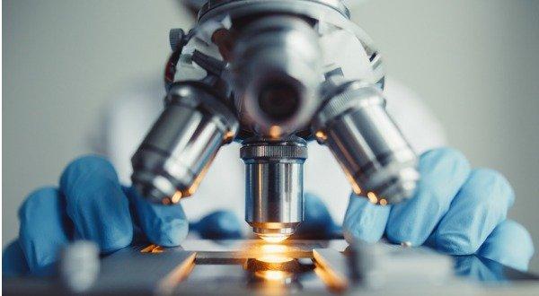 researcher studying cancer metastasis
