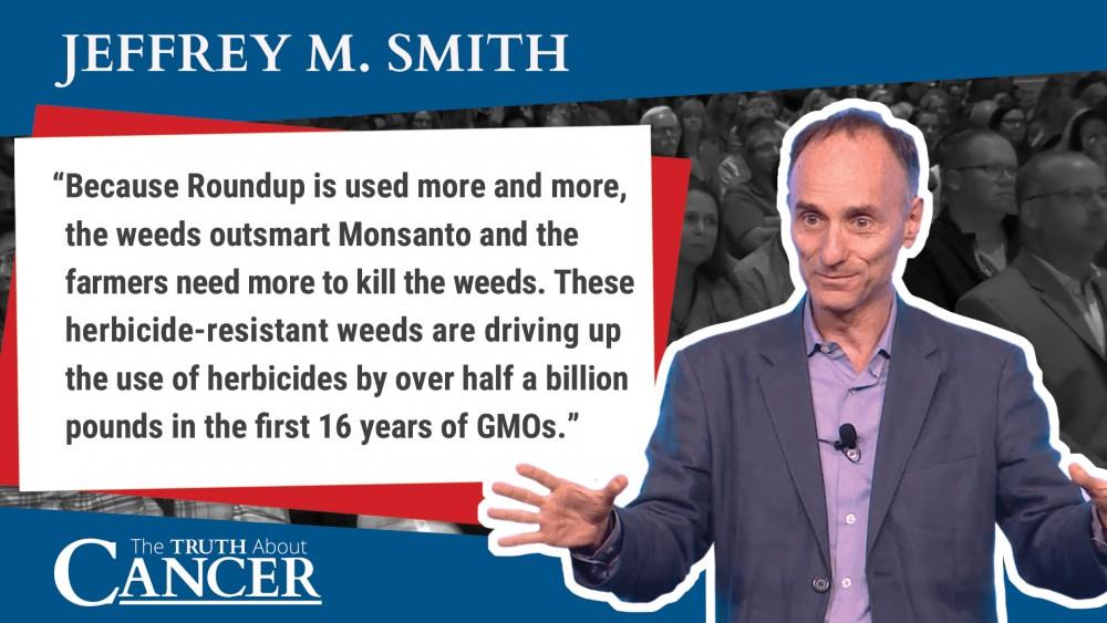 Jeffrey Smith excerpt quote