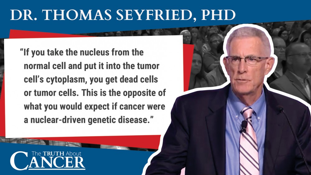 excerpt quote dr. Thomas Seyfried