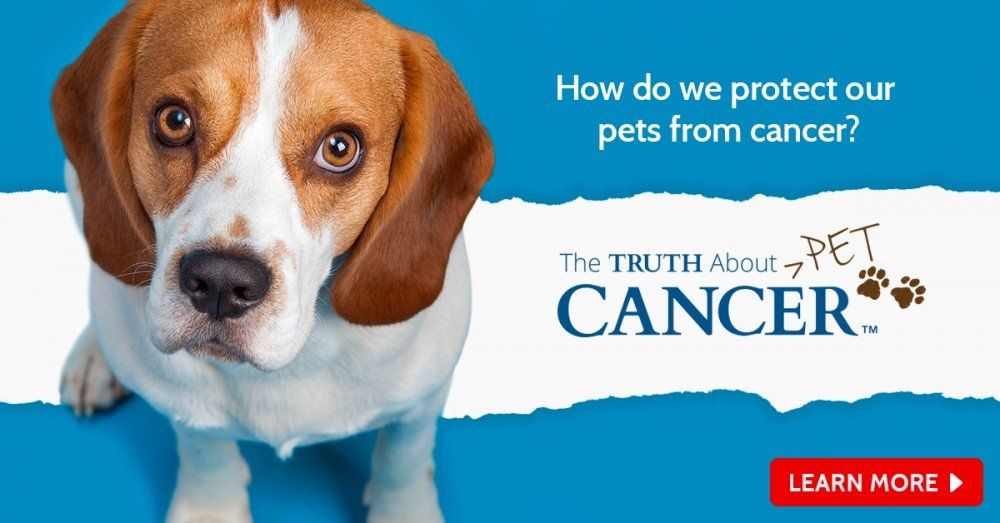 the truth about pet cancer banner 2