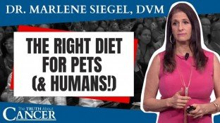 How the Right Diet Leads to a Better Life For Pets (& Humans!) - video