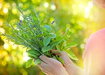 Eating fresh (and dried) herbs provides your body with numerous benefits including balancing hormones and boosting detoxification