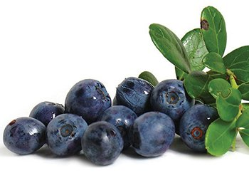 anthocyanin anti-cancer food