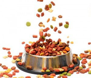 Many pet foods are made with ingredients that do not promote optimal health