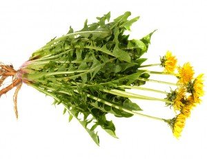 Fresh young dandelion leaves (from yards that have not been sprayed with pesticides) are a wonderful free source of bitter herbs