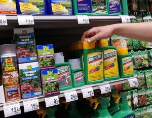 Roundup is the world's most popular weed killer and is linked with a wide range of diseases, including cancer
