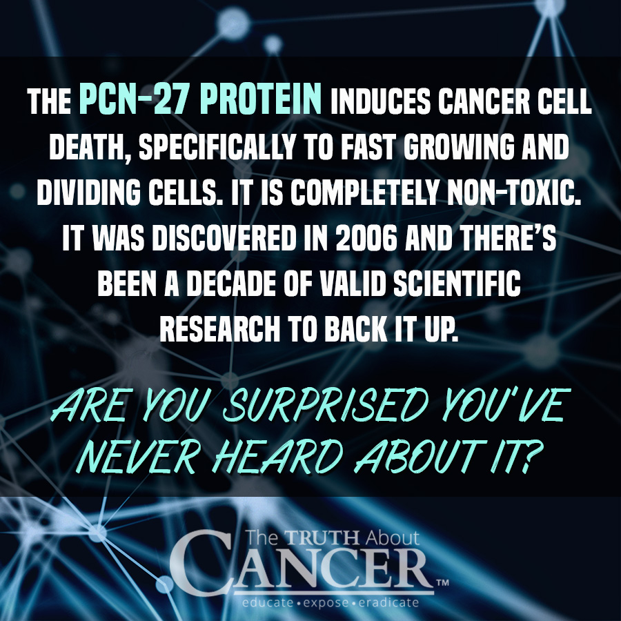 Have you ever heard of the PCN-27 Protein? Is PNC-27 Better Than Radiation & Chemo? Click on the image to discover more...