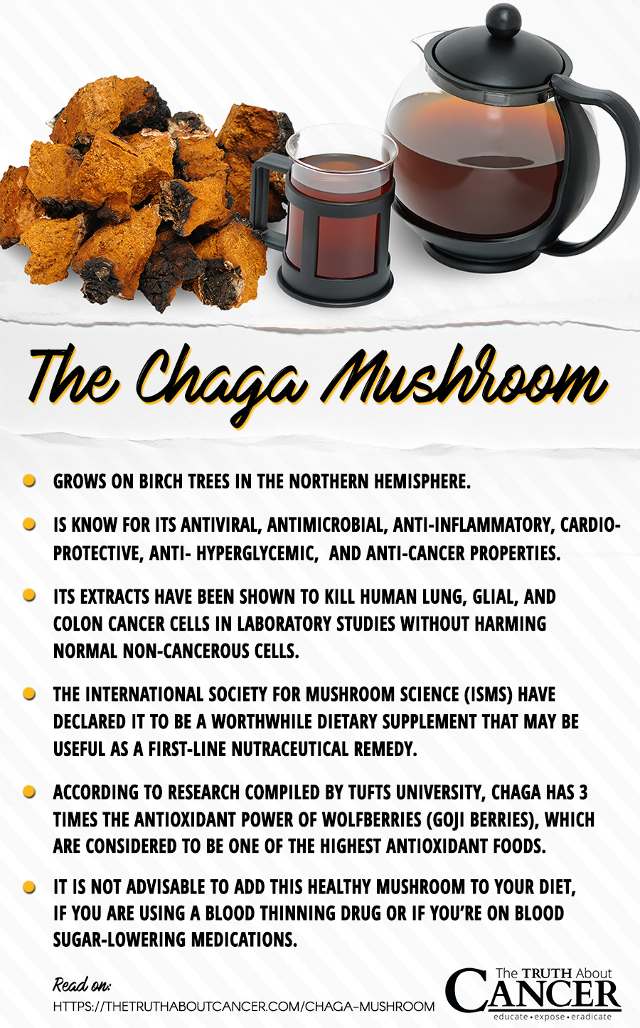 Chaga Mushroom facts backed by studies. Click on the image to read the full article on The Truth About Cancer.