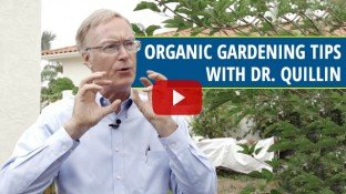Organic Gardening With Dr. Patrick Quillin (video)