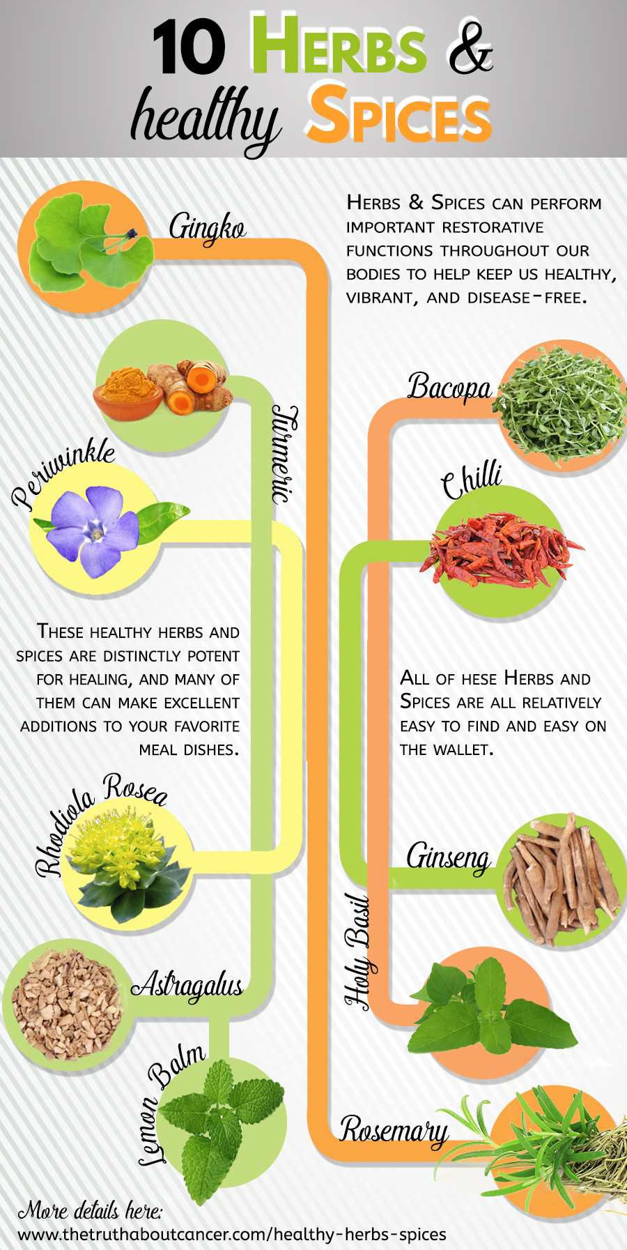 11 Healthy Herbs & Spices That Help Keep Disease At Bay