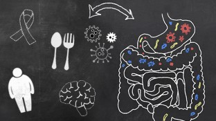 5 Ways Not Having a Healthy Gut Compromises Your Health
