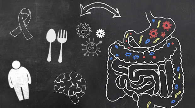 Imbalanced-gut-health-cancer-connection