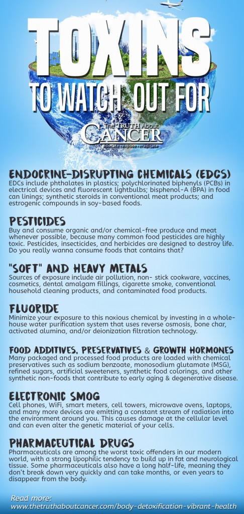 toxicity-sources-to-avoid