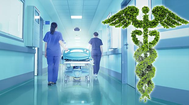 natural-medicine-detox-surgery