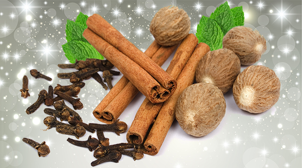 4-healthy-holiday-spices