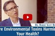 Vid-Robert-Scott-Bell-Environmental-toxins