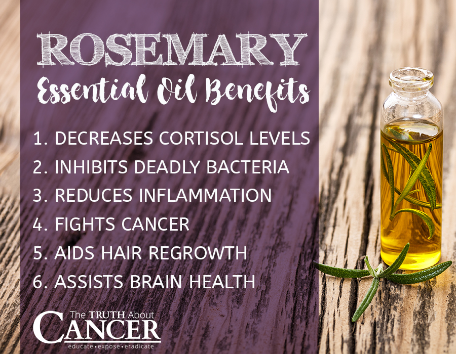 Rosemary-Essential-Oil-Benefits