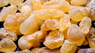 The Anti-Inflammatory and Healing Power of Boswellia Serrata