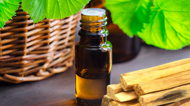 Image result for palo santo essential oil