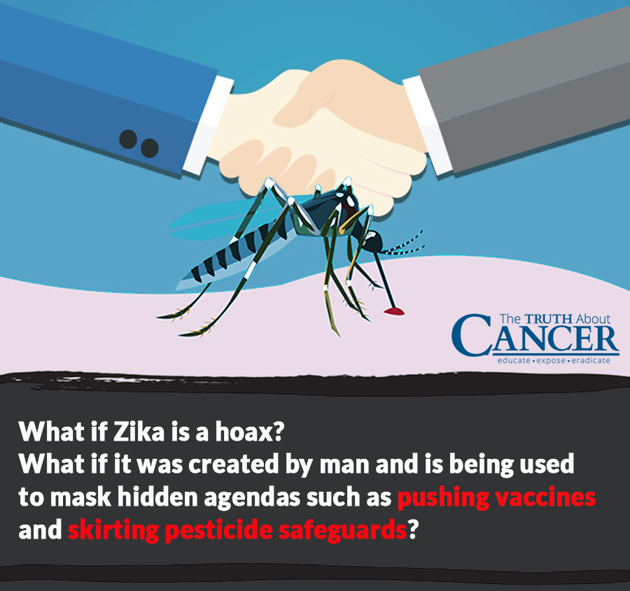 zika-part1-health-scare-question-2