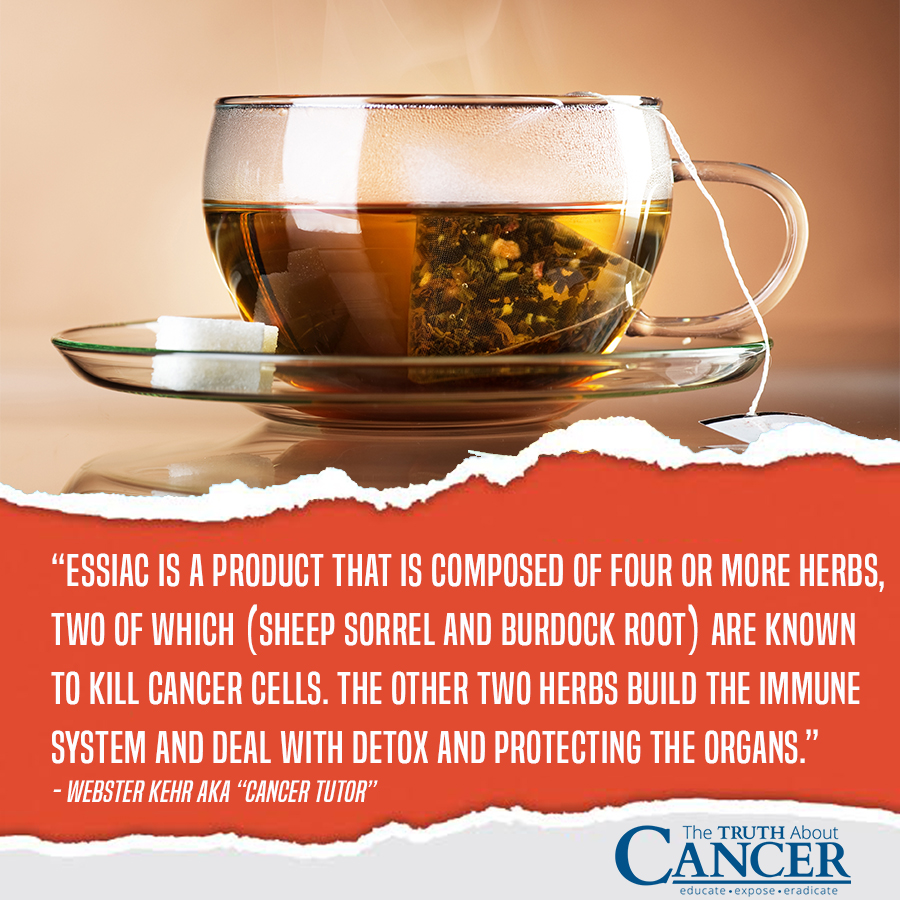The Truth About Cancer Essiac Tea