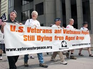 agent_orange_march_veterans for peace
