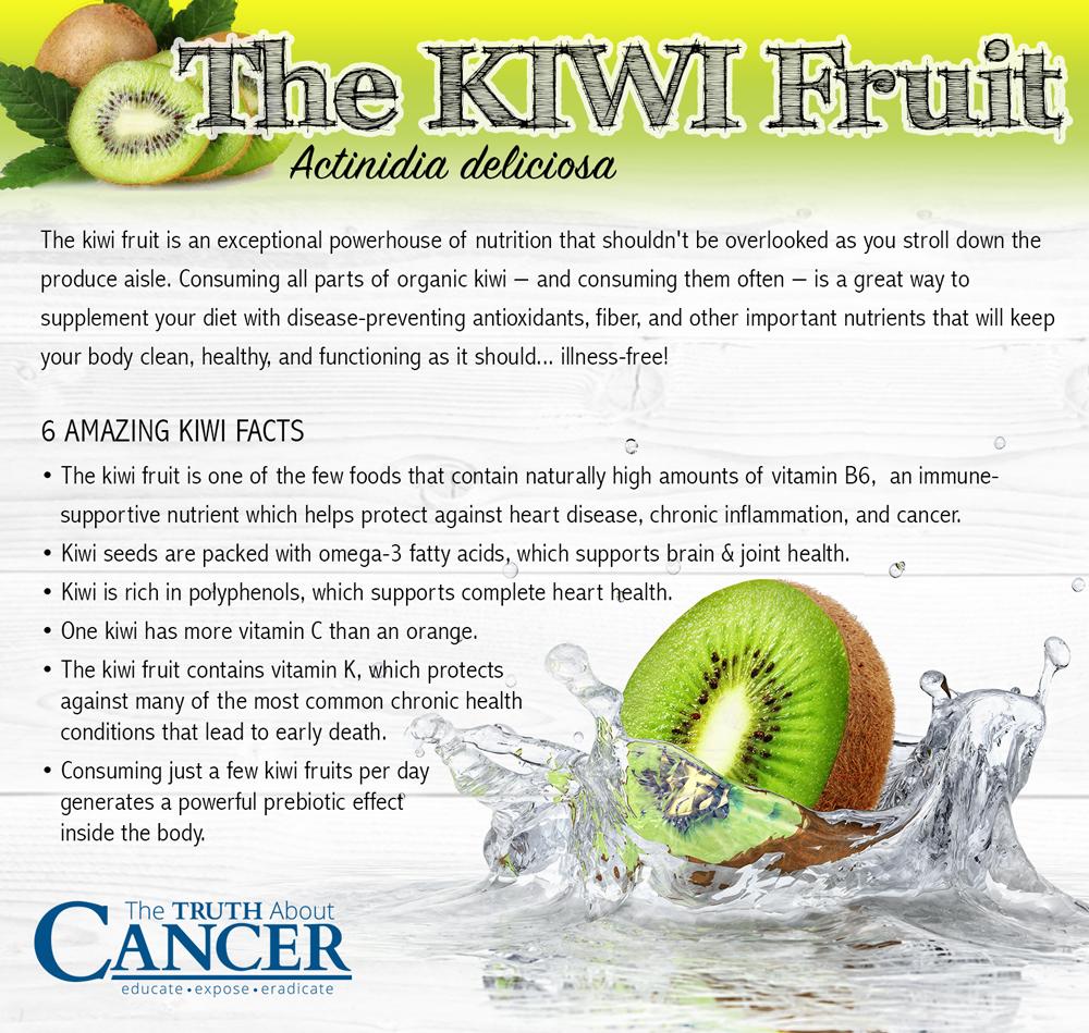 Kiwi-fruit-medicinal-powerhouse-2