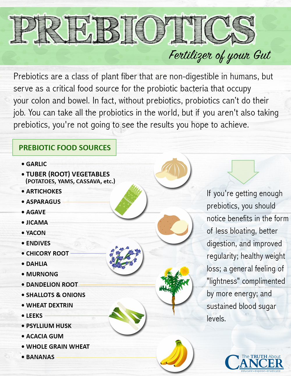 prebiotics-food-sources