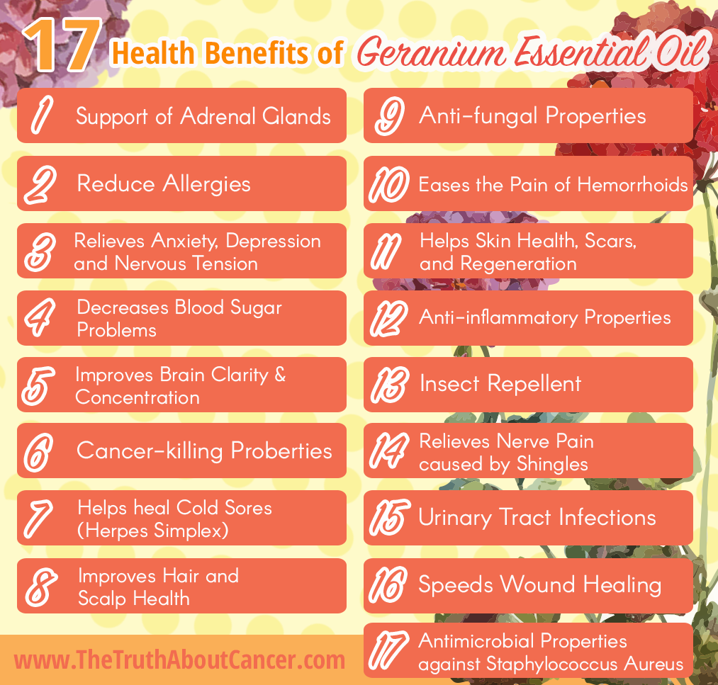Geranium-Essential_oil-health-benefit-3