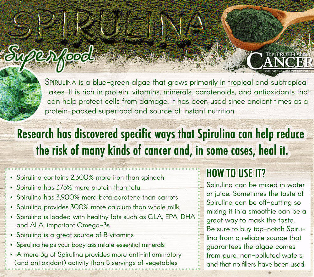 Spirulina-algae-benefits-infographic