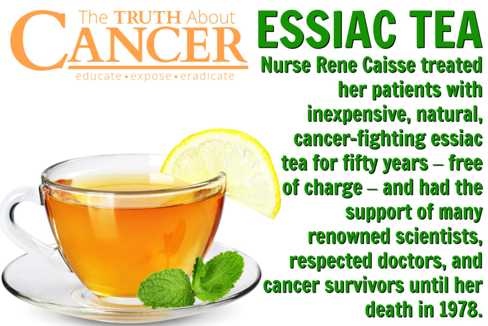 essiac tea recipe