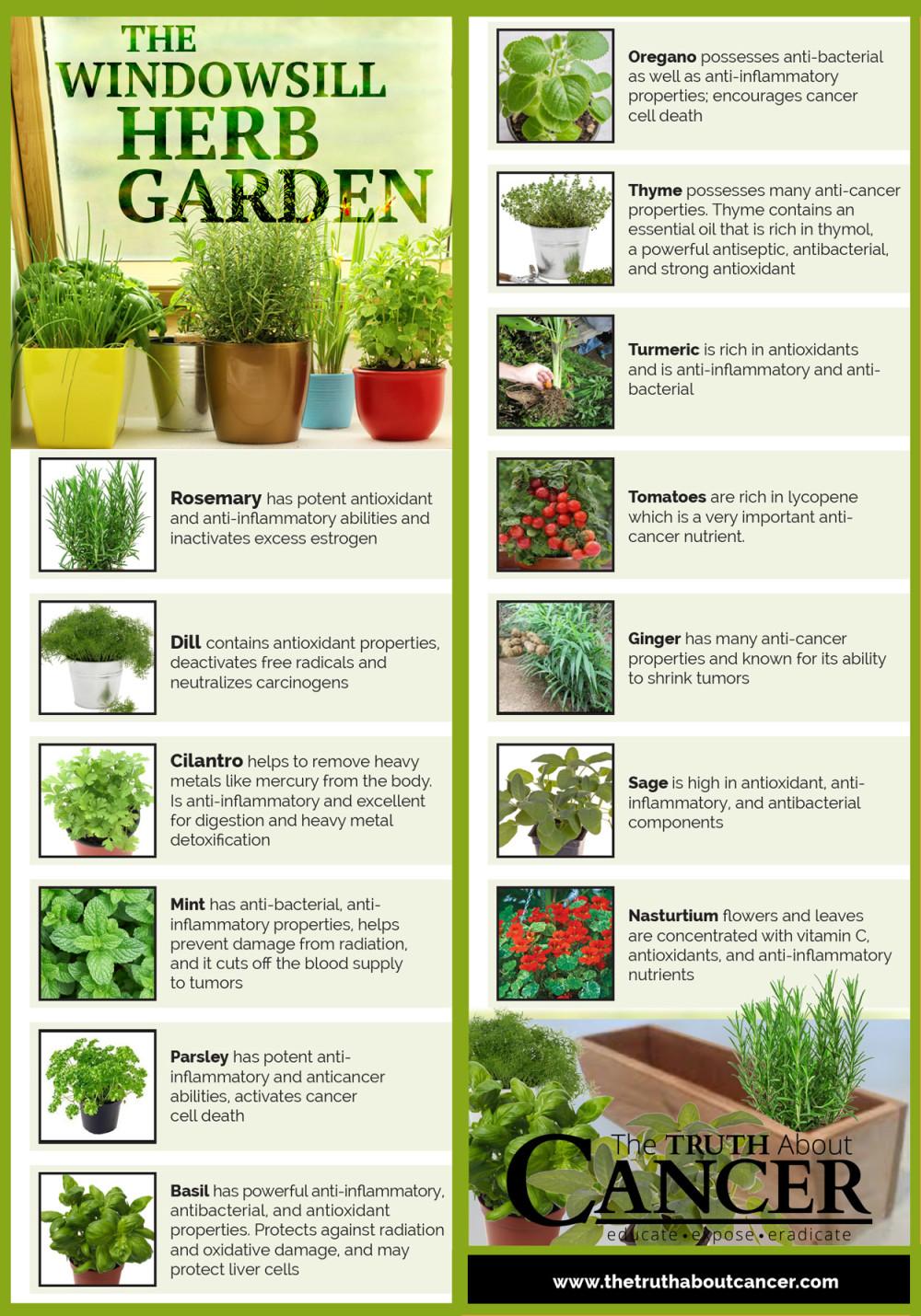 Windowshill-Herb-Garden-article