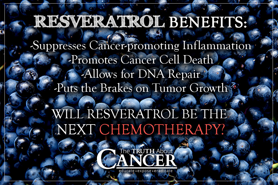 cancer-fighting-benefits-resveratrol-supplements