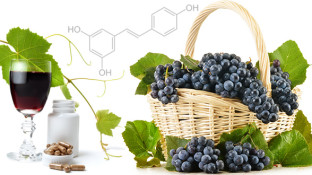 6 Ways Resveratrol Supplements Help Prevent Cancer