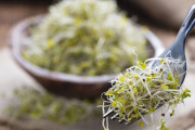 eat-broccoli-sprouts