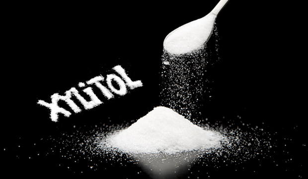Toxic-Xylitol-sugar-substitude