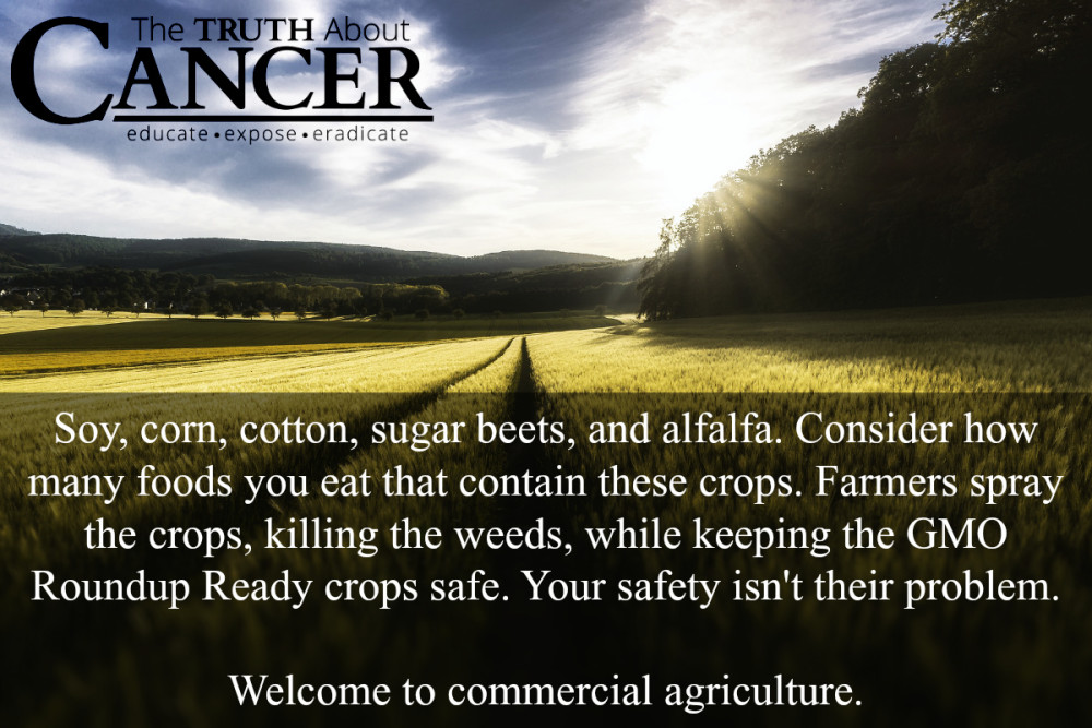 Monsanto-GMO--Cancer-CAusing-Foods