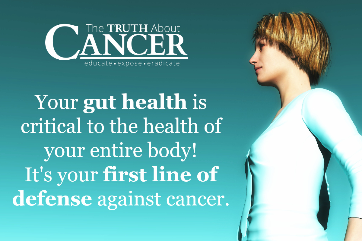 Is Your Gut Helping You Prevent Breast Cancer?Is Your Gut Helping You Prevent Breast Cancer?