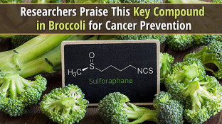 Researchers Praise This Key Compound in Broccoli for Cancer Prevention