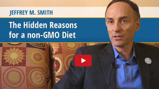 The Hidden Reasons for a non-GMO Diet (video)