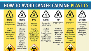 Does Plastic Cause Cancer? How to Avoid Cancer Causing Plastics
