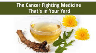 The Cancer Fighting Medicine That's Growing in Your Yard
