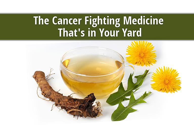 Herb breast cancer canada