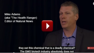 What is Your Biggest Health Risk When Eating GMO Foods? (video)