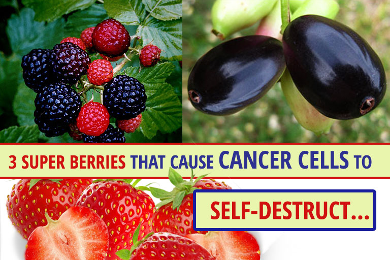 3 Super Berries That Cause Cancer Cells to Self-Destruct
