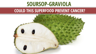 Soursop (Graviola): Could this Superfood Prevent Cancer?