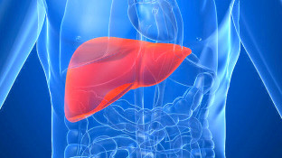 Statistics and Causes of Liver Cancer