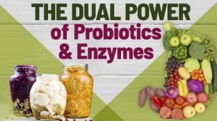 Sacred Synergy: The Dual Power of Probiotics and Enzymes